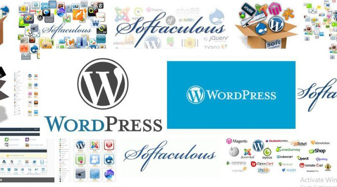 WordPress and Softaculous Issues